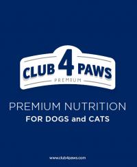 club 4 paw